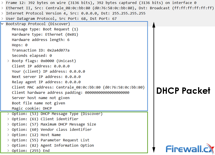 dhcp packet capture with dhcp options