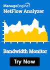 Netflow Bandwidth Monitor