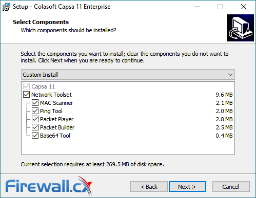capsa enterprise v11 installation options