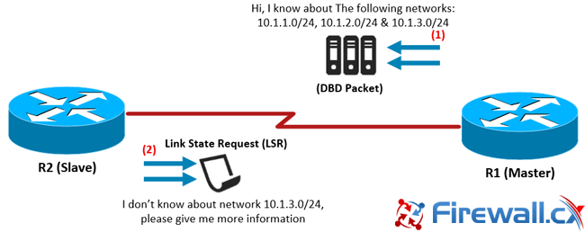 ospf-adjacency-neighbor-forming-process-hello-packets-lsr-lsu-2
