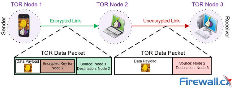 Data transfer via the TOR network guarantees encryption and privacy